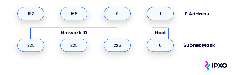 The network and host portions of an IP address